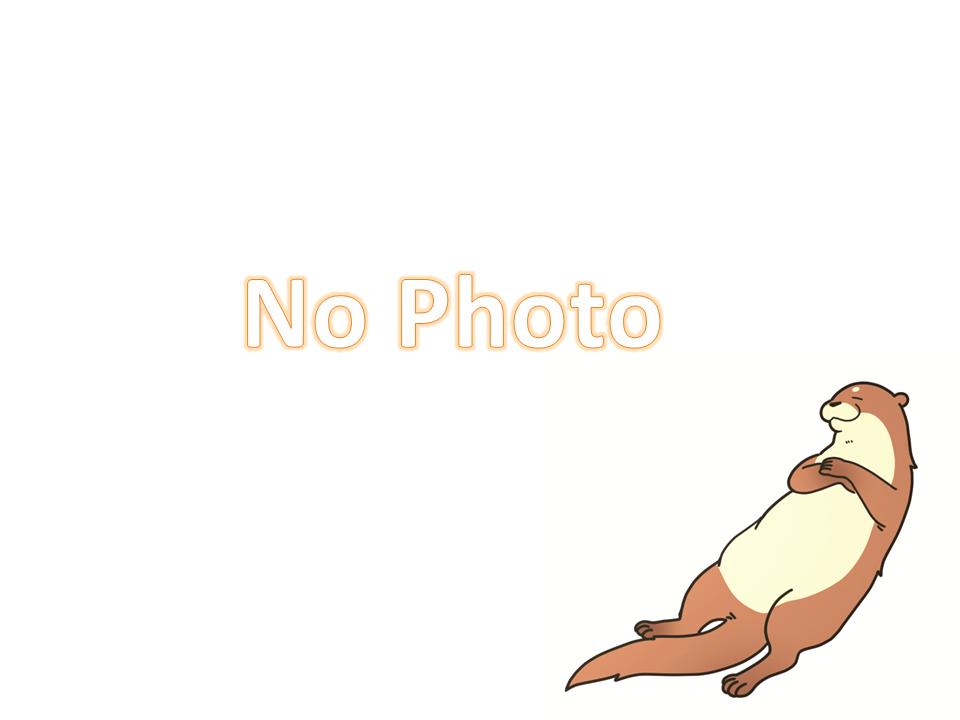 写真はありません。